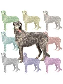 Irish Wolfhound clipart graphics (Free clip art.