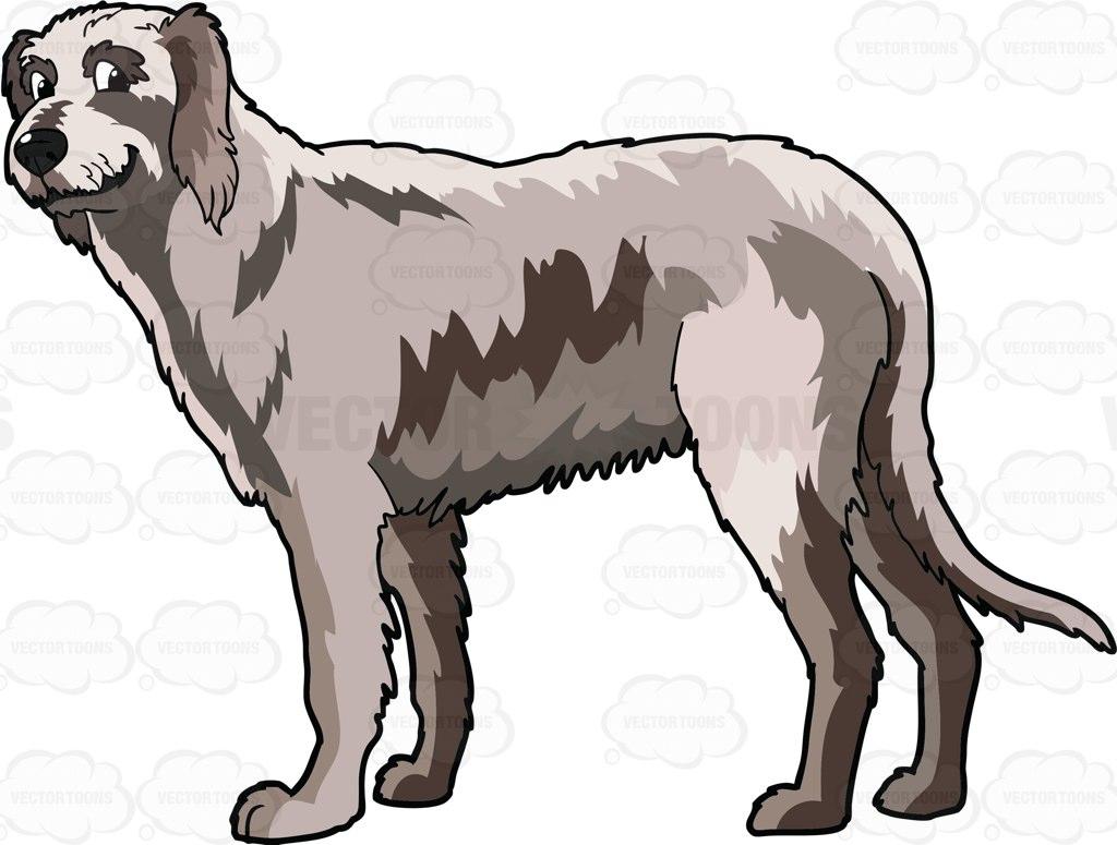 A Smiling Irish Wolfhound Cartoon Clipart.