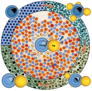 Bifunctional Nanoparticles with Optical Properties.