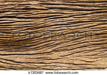 Picture of Ironwood Texture k1303487.