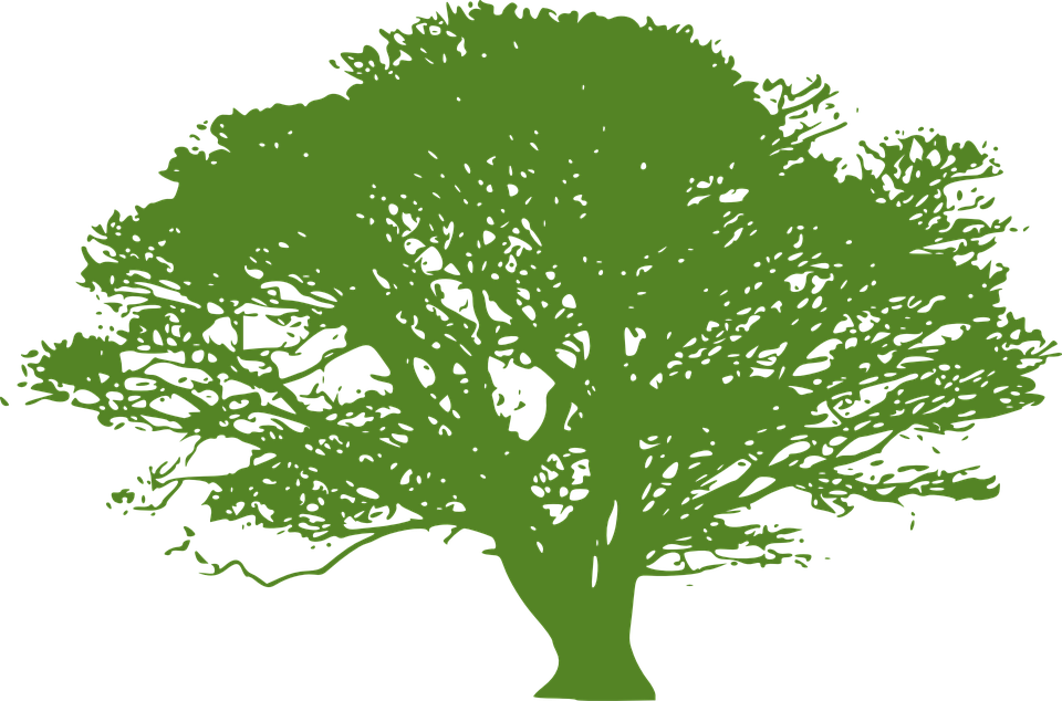 Free vector graphic: Tree, Green, Silhouette, Nature.