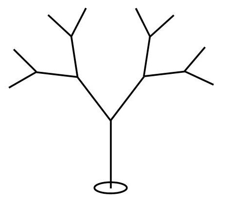 Indian Ironwood Tree.