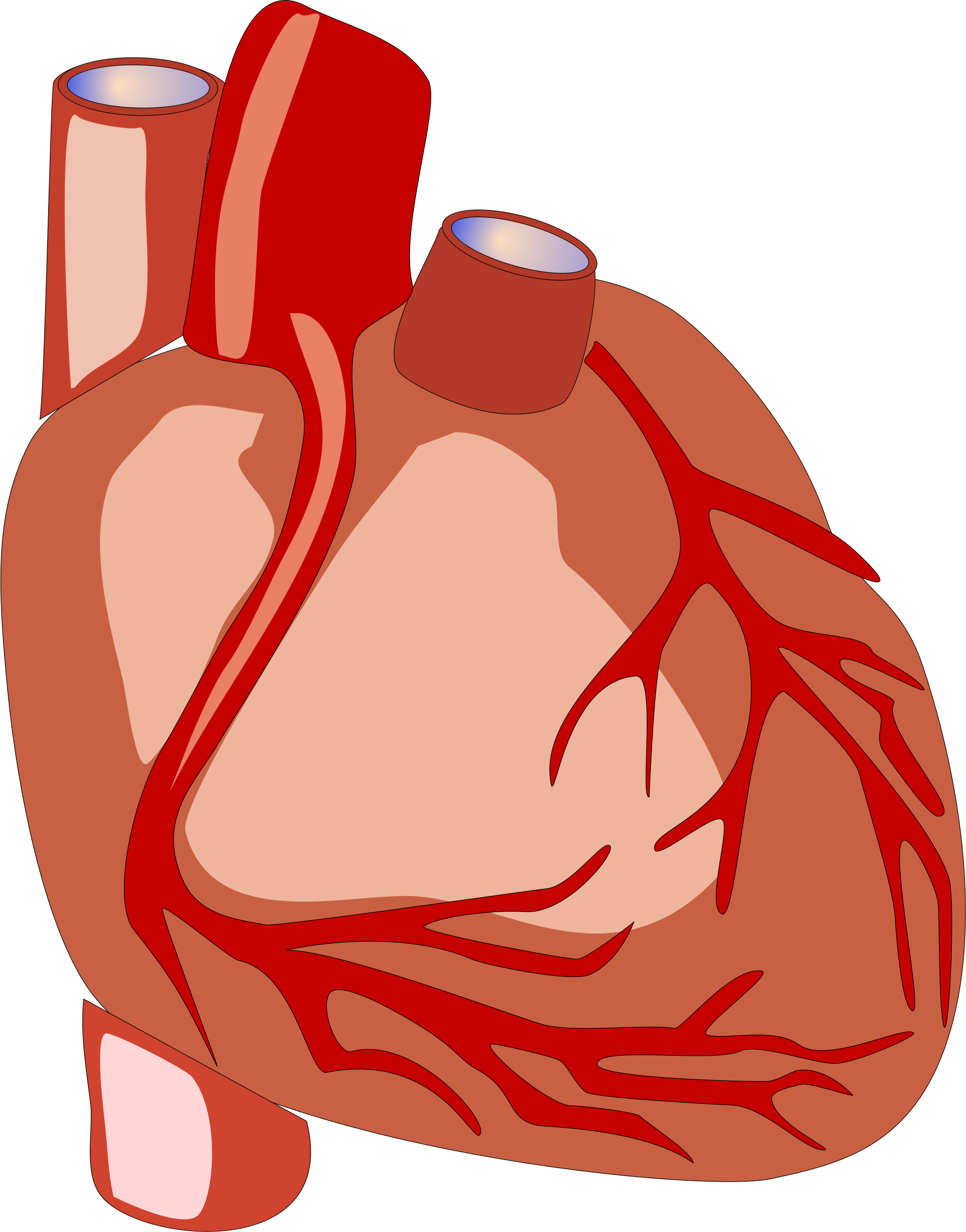 Human Heart vector file image.