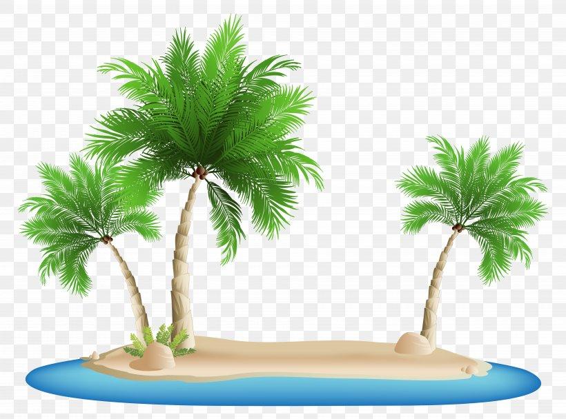Beach Clip Art, PNG, 7500x5562px, Palm Islands, Arecaceae.