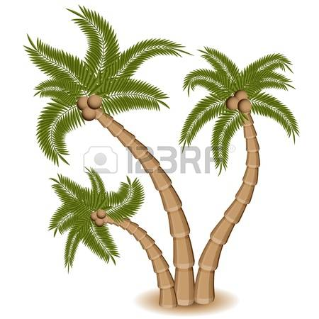 905 Island Groups Stock Vector Illustration And Royalty Free.