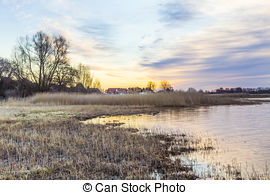Picture of backwater landscape at the island of Usedom with reed.