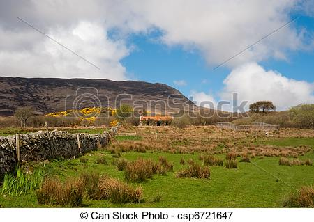 Picture of Islay field.