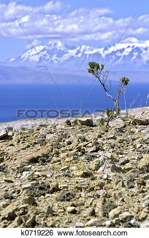 Stock Images of Isla del Sol.