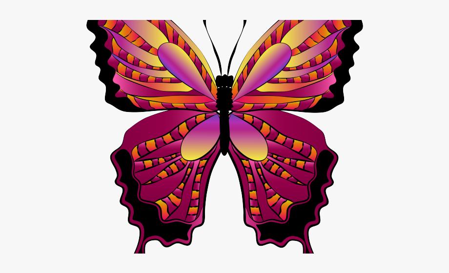 Boulder Clipart Butterfly.