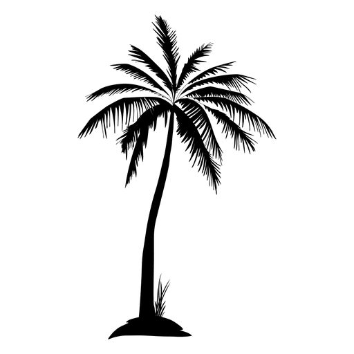 Black isolated palm tree silhouette.