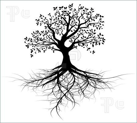 Illustration of whole black tree with roots isolated white.