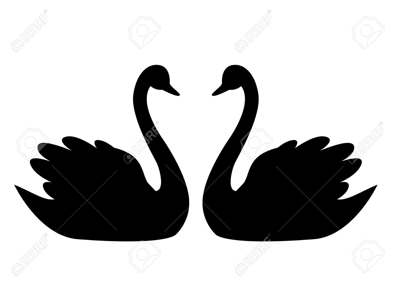 Swan Couple In Love Illustration / Clipart Isolated On White.