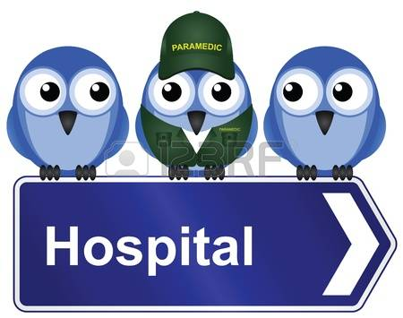 12,180 Animal Hospital Stock Illustrations, Cliparts And Royalty.