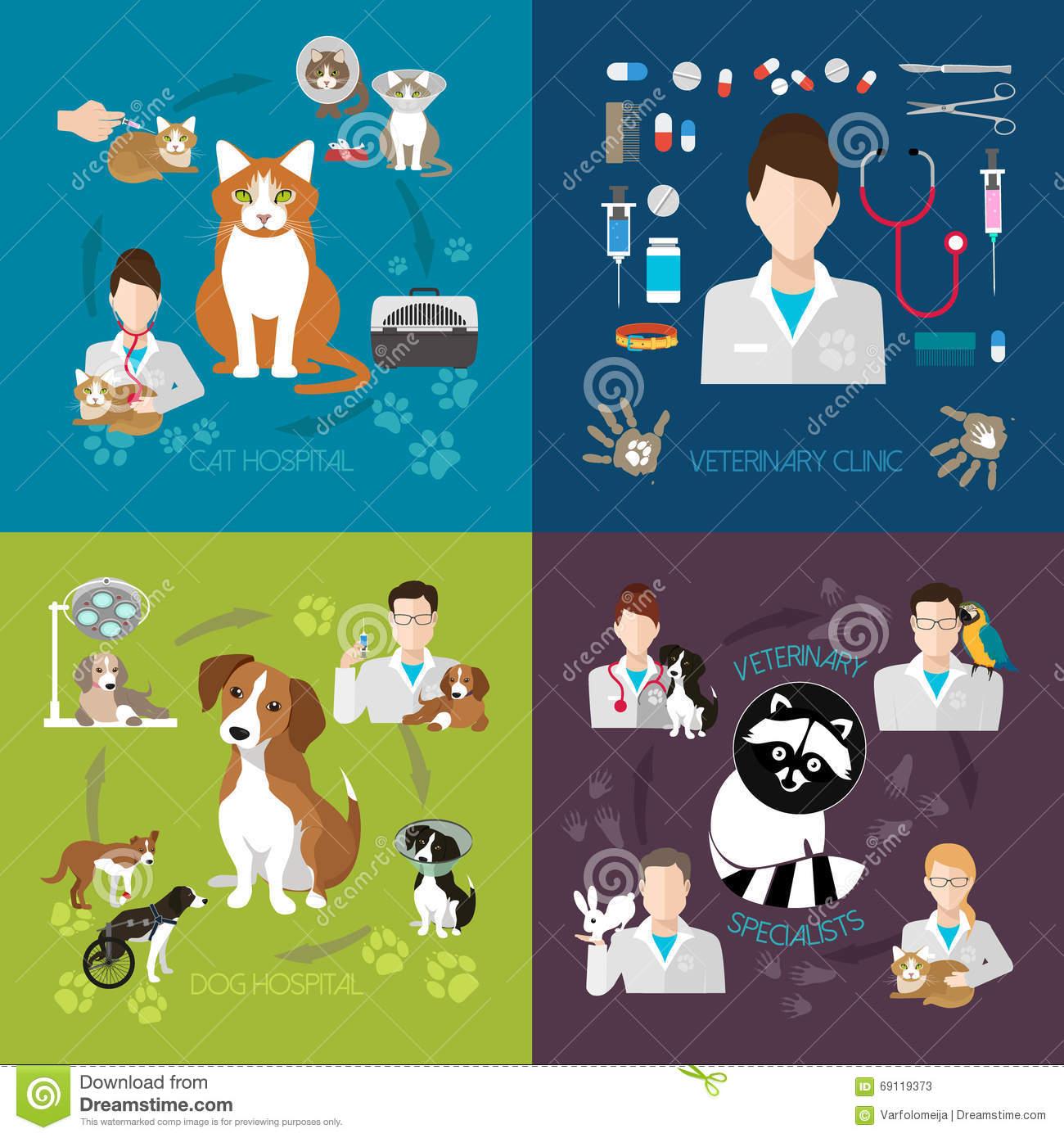 Pet Clinic, Dog And Cat, Animal Hospital, Pet Hospital Stock.