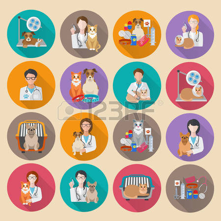 17,912 Veterinary Stock Vector Illustration And Royalty Free.