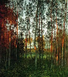 In the forest at autumn.