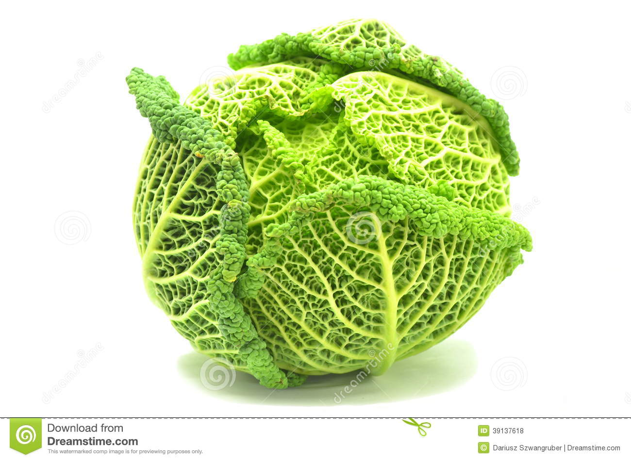 Italian Cabbage Royalty Free Stock Photos.
