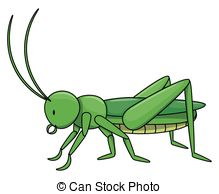 Locust Illustrations and Clipart. 553 Locust royalty free.