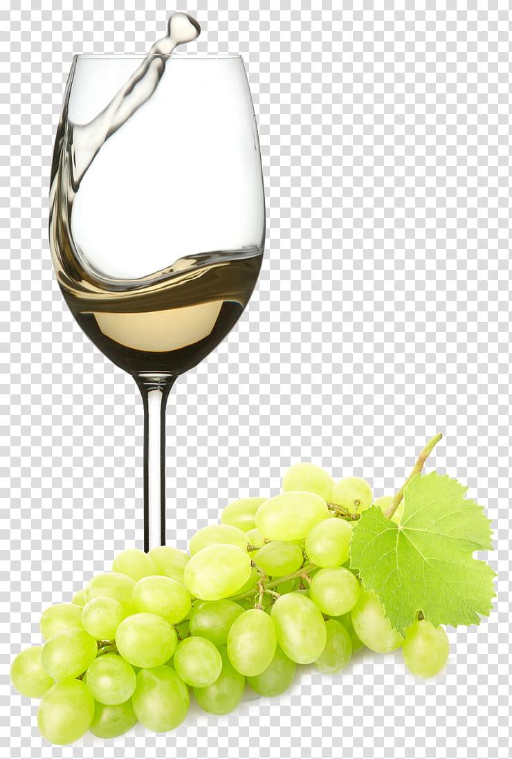 Champagne Bottle, White Wine, Zinfandel, Red Wine, Italian.
