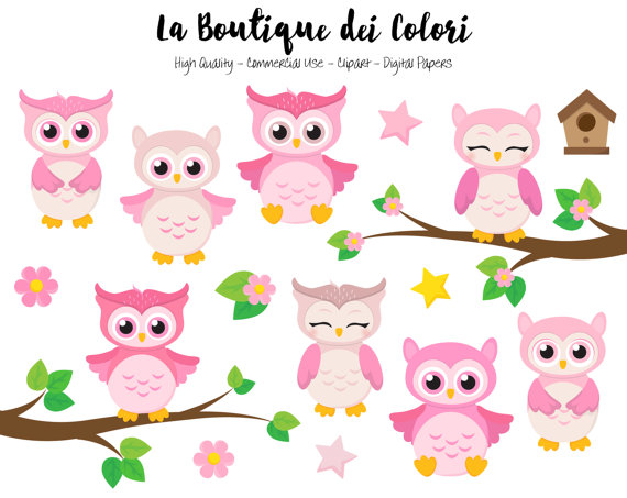 Pink Baby Owls Clipart, Cute Graphics PNG, Birds, animals, Its a.