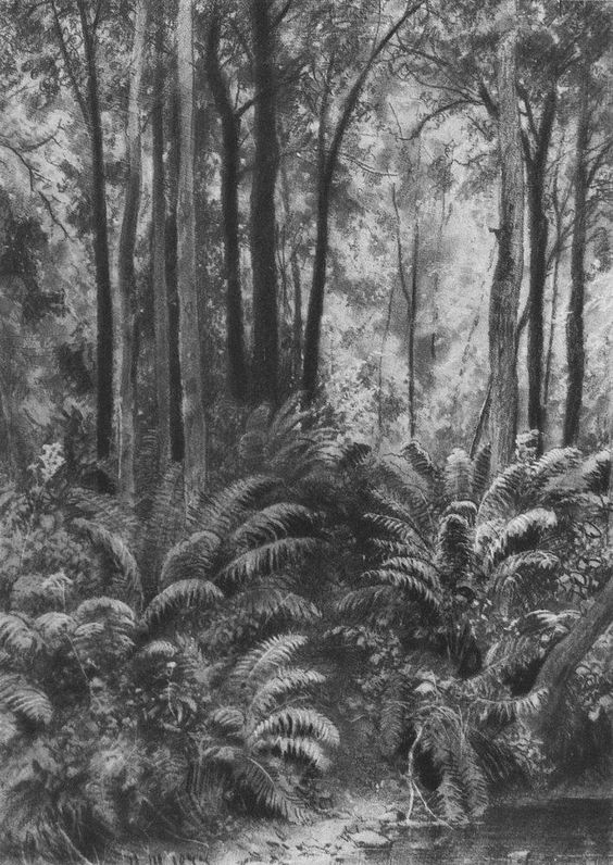 Ferns in the forest, 1877 Ivan Shishkin.