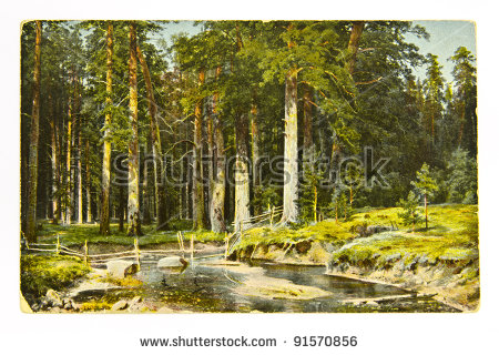 Shishkin Stock Photos, Royalty.