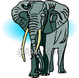 Ivory 20clipart.