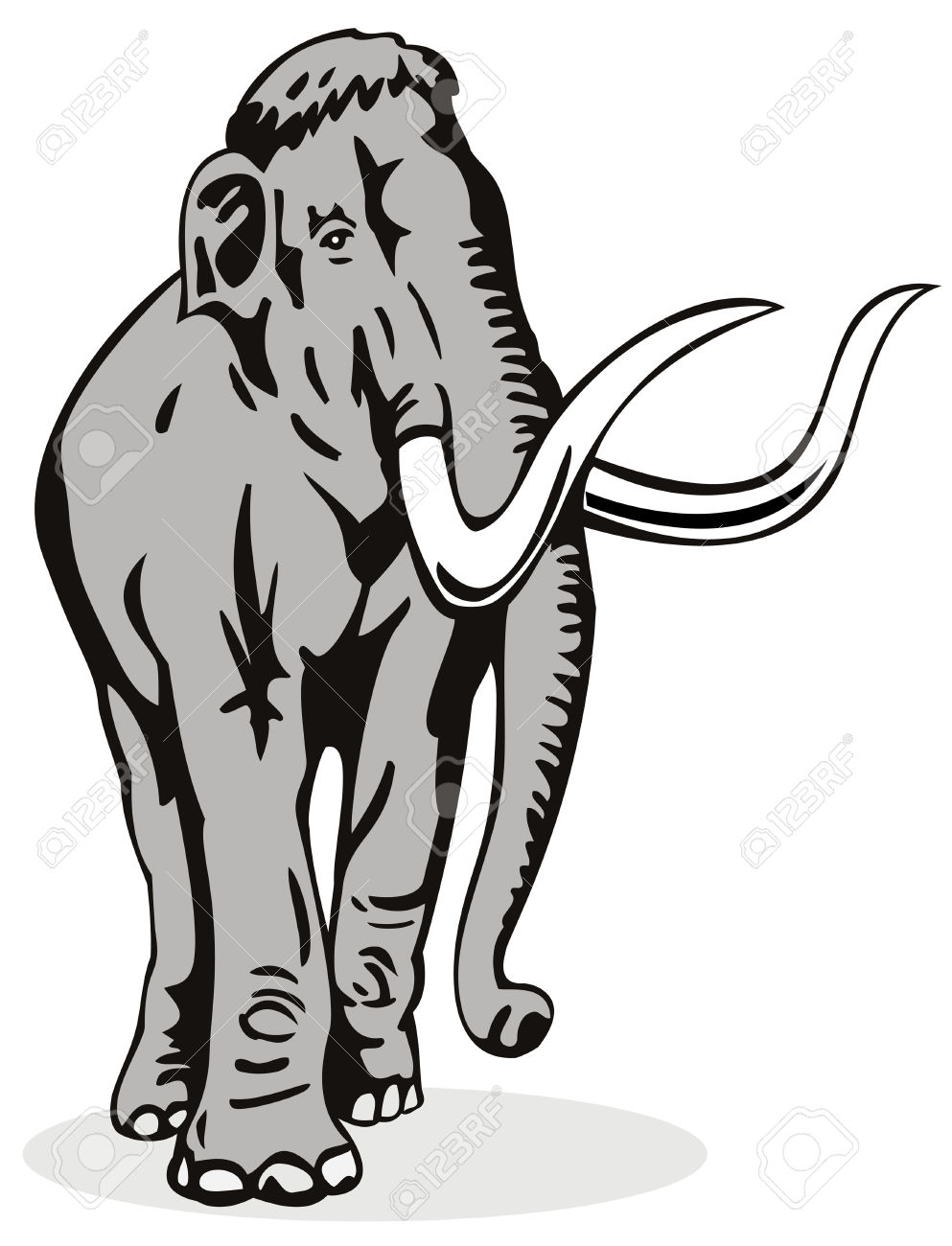 Mammoth With Large Tusk Royalty Free Cliparts, Vectors, And Stock.
