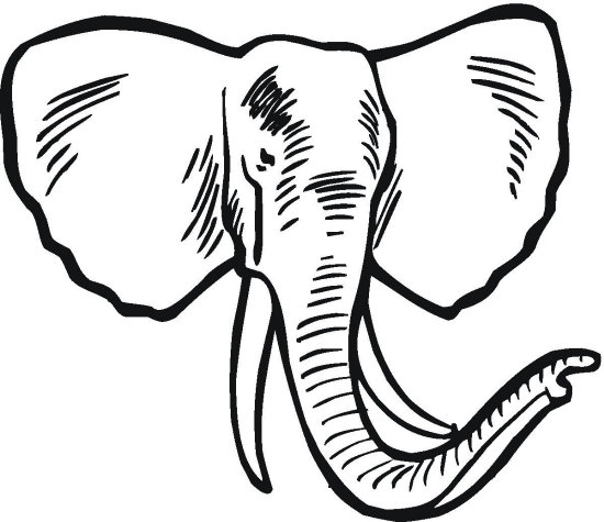 elephant coloring pages Download Big Elephant With Two Tusks.