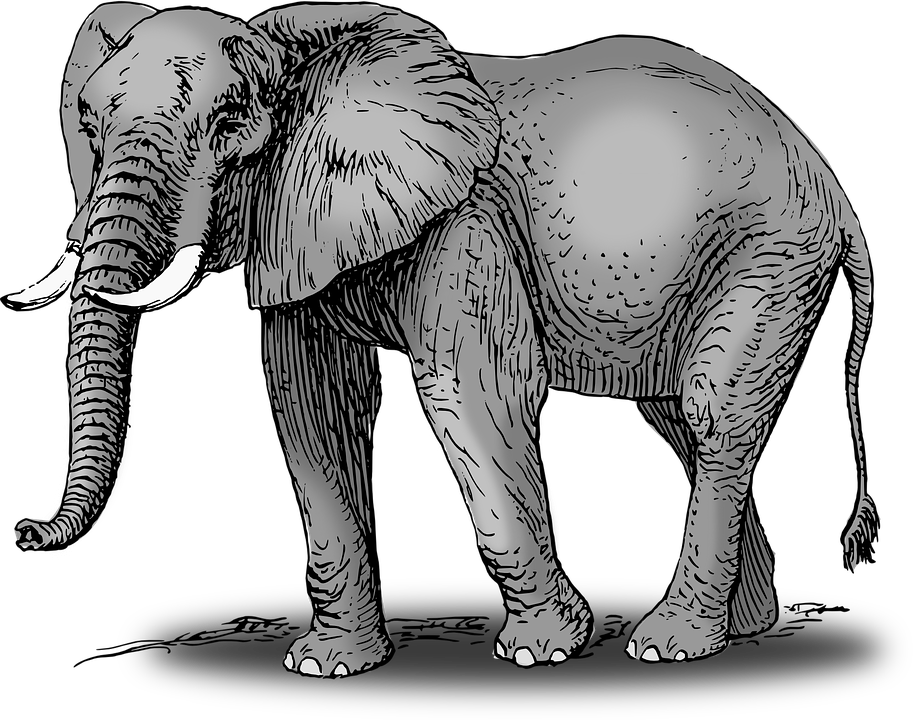 Free vector graphic: Elephant, Animal, Mammal, Wild.