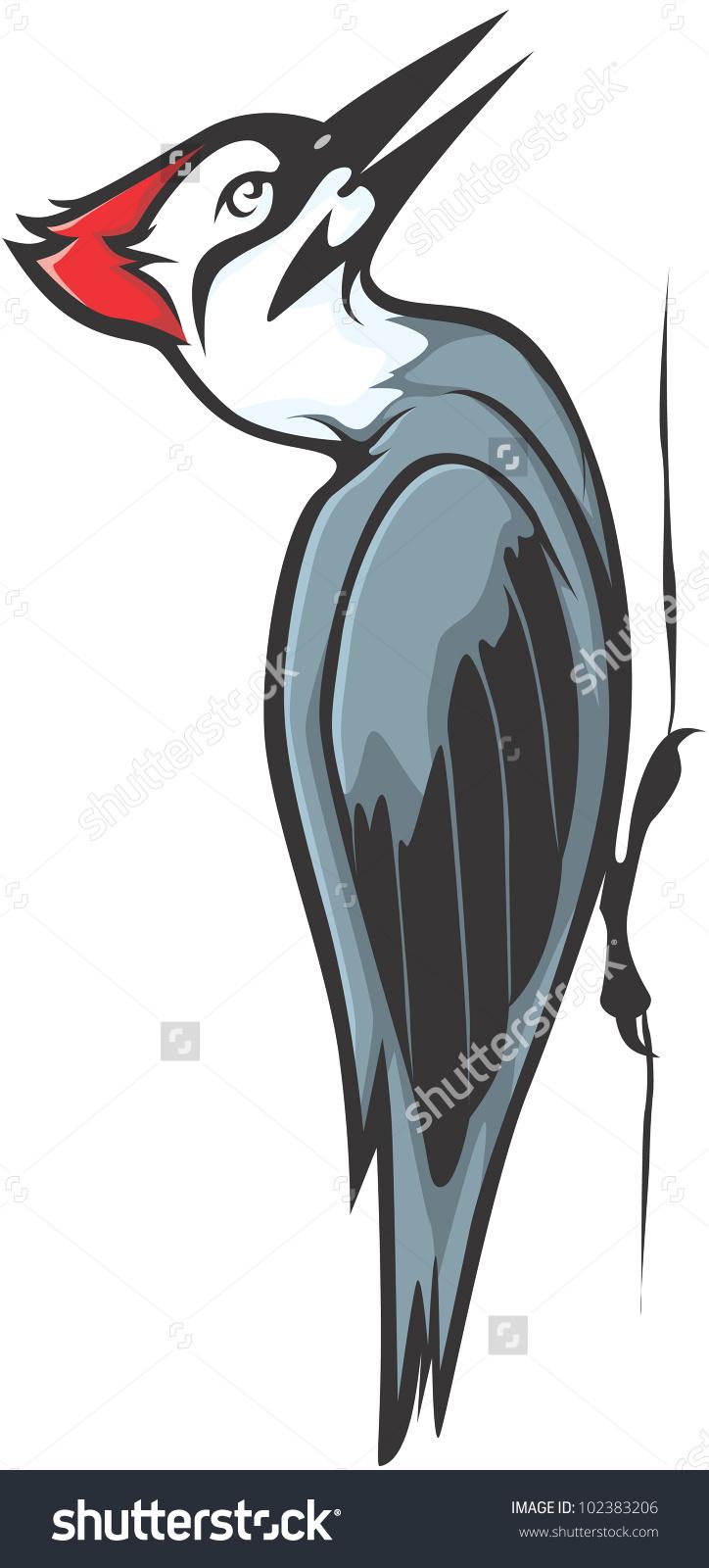 Creative Ivory Billed Woodpecker Illustration.