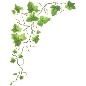 Free Ivy Cliparts, Download Free Clip Art, Free Clip Art on Clipart.
