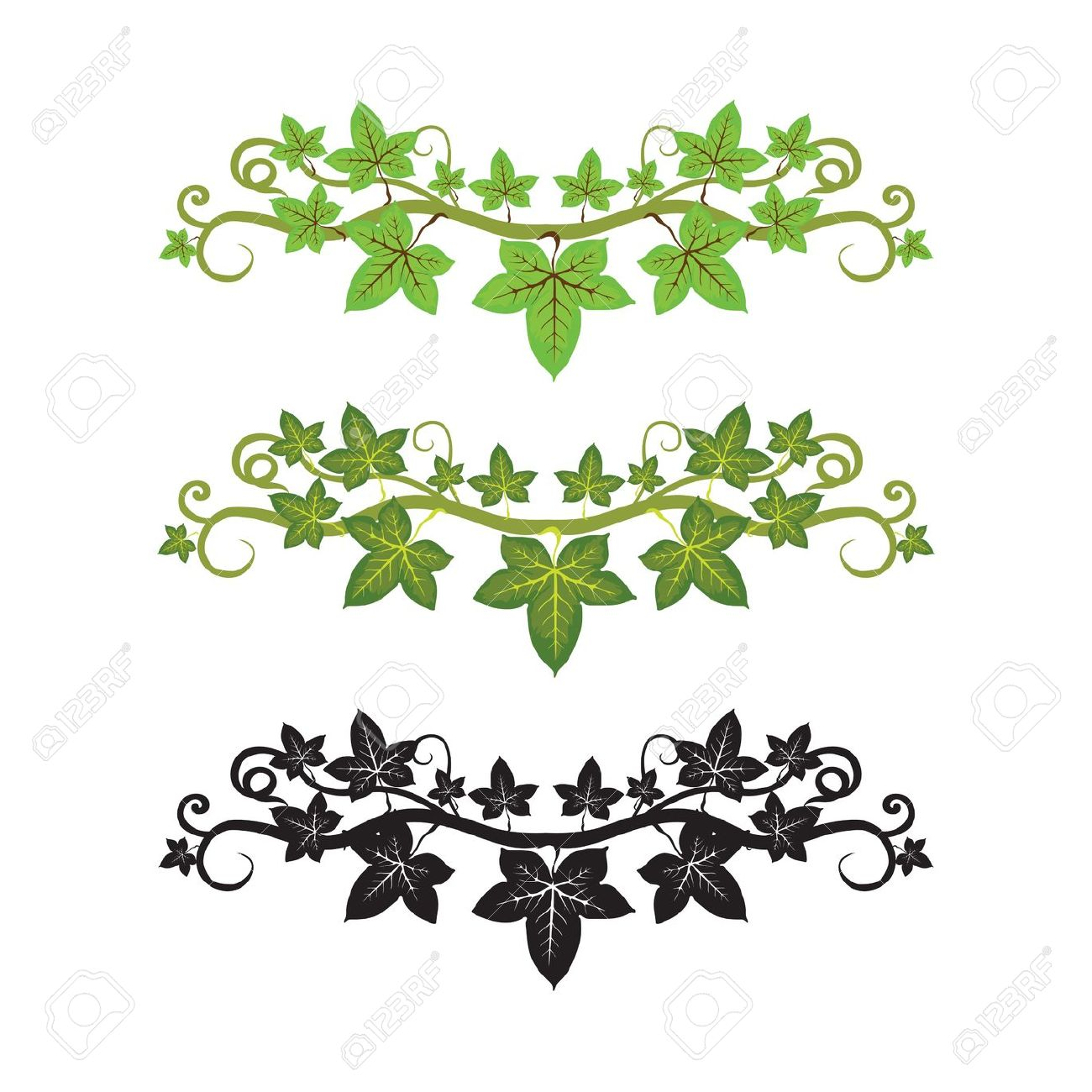 6,417 Ivy Stock Illustrations, Cliparts And Royalty Free Ivy Vectors.