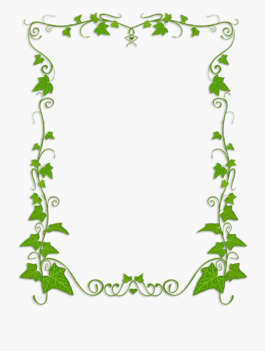 Common Ivy Plant Vine Clip Art.