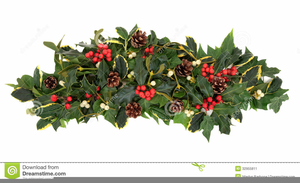 Christmas Ivy Clipart.