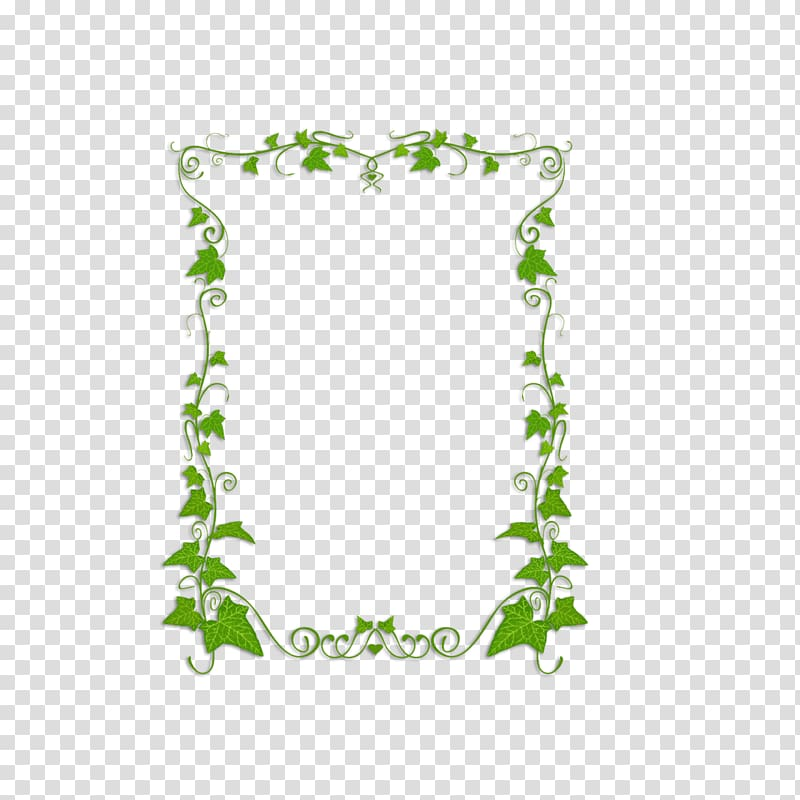 Green leaves illustration, Common ivy Plant Vine , green.