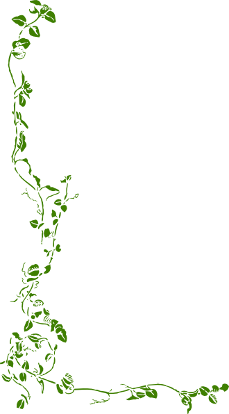 horizontal clipart vine leaves #1372.