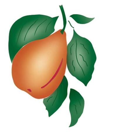 1000+ images about Fruit, Vegetables, Ivy and Vine Wall Stencils.