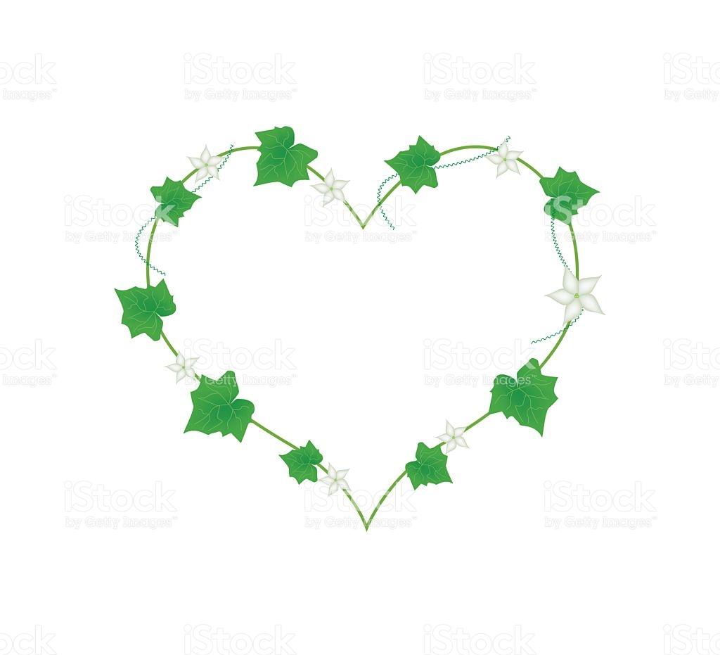 White Flowers And Leaves In Heart Shape stock vector art 509863378.