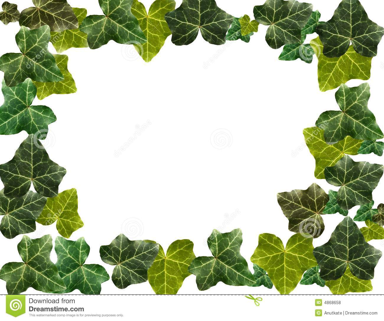 958 Ivy free clipart.