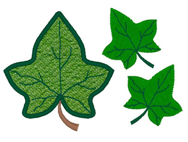 Ivy Leaf Clipart.