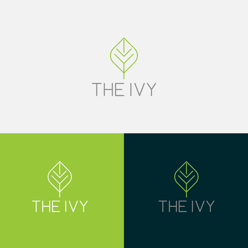 The Ivy ***NEEDS A COOL MODERN LOGO***.
