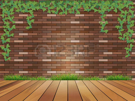 Ivy On Building Stock Photos & Pictures. Royalty Free Ivy On.