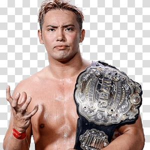 Iwgp Heavyweight Championship PNG clipart images free.