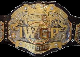 IWGP Heavyweight Championship (IGF).