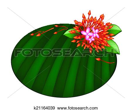Clip Art of Beautiful Red Ixora Flowers on Banana Leaf k21164039.
