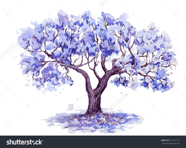 Jacaranda Treeswatercolor Sketch Stock Illustration 411517717.
