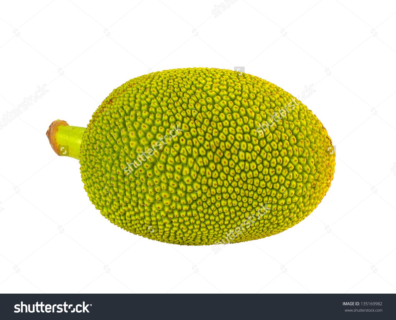 Young Jackfruit Isolated Stock Photo 135169982.