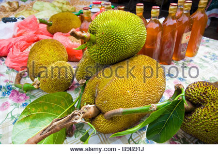 Jackfruit Stock Photos & Jackfruit Stock Images.