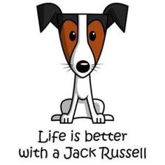 Clipart jack russell.